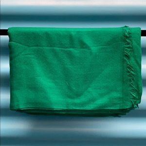Accessories - Jaipur Green Silk Cashmere Scarf Wrap